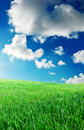 Free Green Meadow In Mountain Royalty Free Stock Photography - 16345417