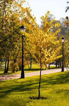 Free Autumn Park. Stock Photography - 16341182