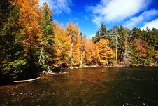 Free Fall Color River Bank Stock Image - 16342021