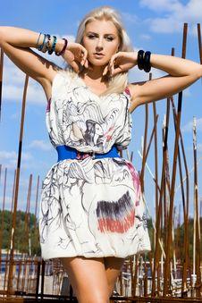 Free Beautiful Fashionable Woman Stock Image - 16342201