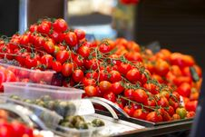 Free Tomatoes Royalty Free Stock Image - 16343456