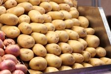 Free Potatoes Royalty Free Stock Photography - 16343467