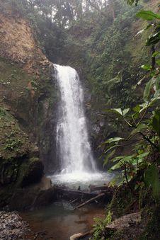 Free Waterfall Royalty Free Stock Photo - 16343575