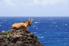 Beautiful Island Royalty Free Stock Photography