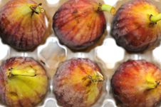 Top View Of Fig Fruits Stock Images