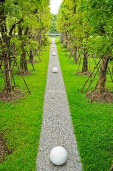 Free Garden Stock Image - 16345871