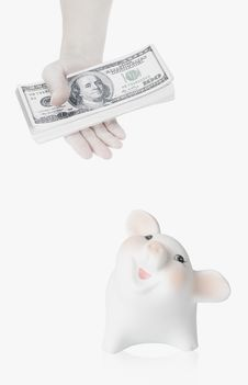 Free Piggy Bank Stock Photography - 16348872