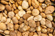 Brown Pebbles Royalty Free Stock Image
