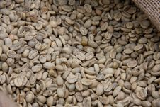 Free Raw Grains Of Coffee Royalty Free Stock Photography - 16350037