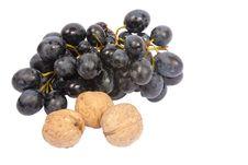 Free Fresh Fruits Stock Photo - 16350270