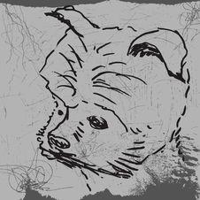 Free Dog Royalty Free Stock Photos - 16350578
