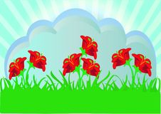 Free Herb With Red Flower Royalty Free Stock Photography - 16350757