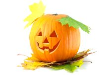 Free Orange Pumpkin Stock Image - 16351911