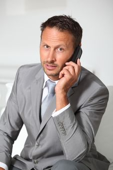 Free Businessman On The Phone Stock Image - 16352481