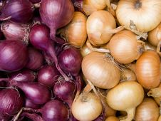 Free Red And White Onions Background Royalty Free Stock Photos - 16357278