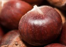 Free Chestnuts Royalty Free Stock Image - 16357676