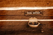 Free Dog Water Fountain Royalty Free Stock Image - 16358116