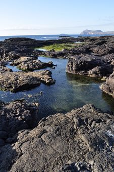Free Galapagos Volcanic Rock Stock Photo - 16358330