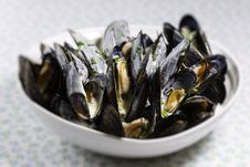 Free Mussel Seafood Plate Stock Images - 16359154