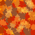 Free Autumn Fall Leaves Background Royalty Free Stock Photography - 16360207