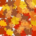 Free Autumn Fall Leaves Background Royalty Free Stock Images - 16360209