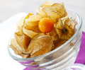 Free Fresh Physalis Royalty Free Stock Photography - 16366397