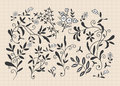 Free Hand Draw Flower Royalty Free Stock Images - 16366619