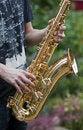 Free Sax Royalty Free Stock Photos - 16366658