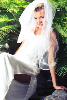 Free Bride Stock Photo - 16361500
