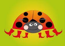 Free Ladybug On Green Background Royalty Free Stock Photo - 16365425