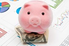 Free Piggy Bank And Charts Stock Images - 16368874