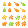 Free Vector Set Of Different Autumn Leafs Royalty Free Stock Photo - 16378125
