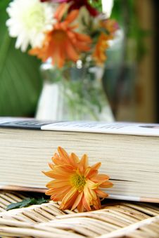 Free Book On A Table With Flowers Royalty Free Stock Photography - 16370367