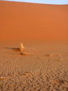 Free Namibian Sand Dunes Stock Images - 16370564