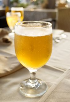 Free Glass Beer On The Table Royalty Free Stock Photography - 16373237