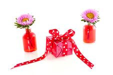 Free Present Between Carnation Flowers Royalty Free Stock Photography - 16374007