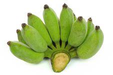 Free Bananas Stock Images - 16377234