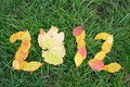 Free Fallen Red And Yellow Leafs Making 2012 Digits Royalty Free Stock Images - 16383959