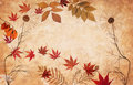 Free Abstract Grunge Floral Background With Leaves Royalty Free Stock Image - 16386406