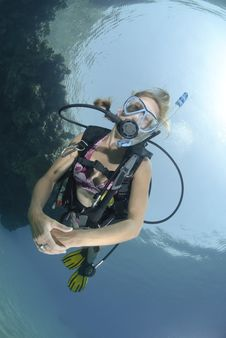 Adult Female Scuba Diver In Bikini Stock Images