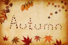Free Autumn Written By Leaves Royalty Free Stock Photography - 16386997