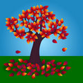 Free Autumn Tree Stock Photos - 16394813
