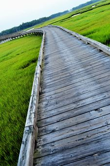 Free Long Bridge And Grass Stock Photography - 16393452