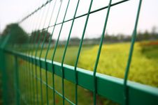 Free Green Fence Royalty Free Stock Photography - 16393527