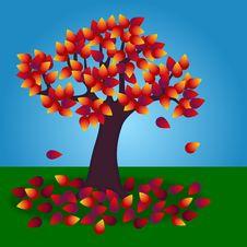 Free Autumn Tree Stock Photos - 16394813
