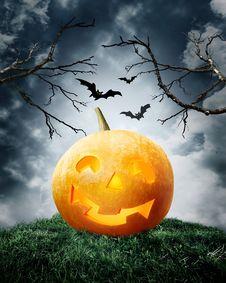 Free Halloween Pumpkin On Field. Royalty Free Stock Image - 16394836