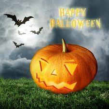 Free Halloween Pumpkin On Field Royalty Free Stock Image - 16394856