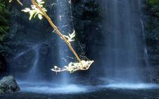Free Spider Waterfall Stock Photography - 16395652