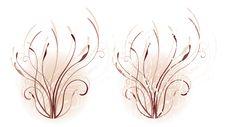 Free Warm Floral Motif Stock Image - 16398071