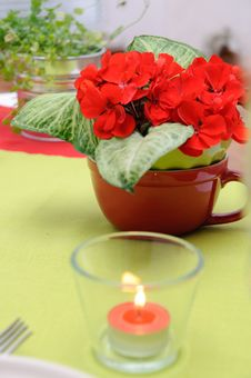 Free Candle In A Glass Candlestick And Flowers Stock Photography - 16398232